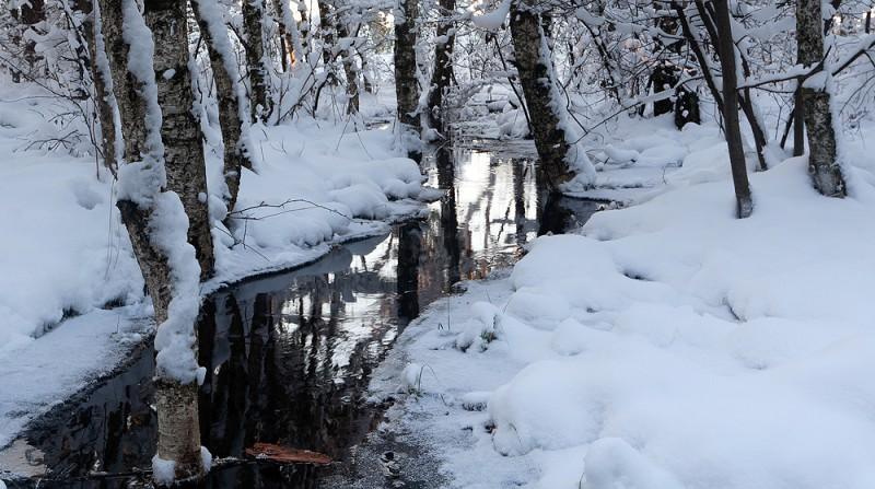 Esimene korralik lumi rabas