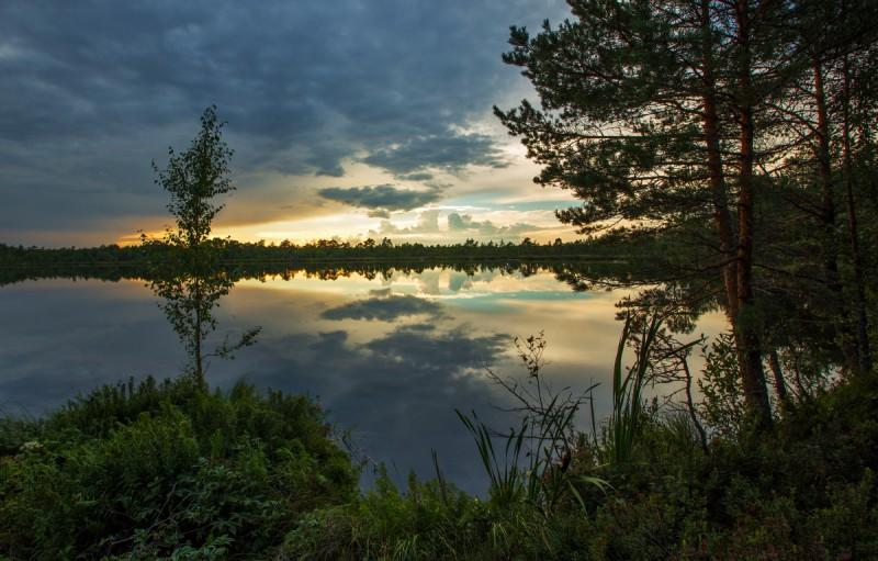 Jalase järv