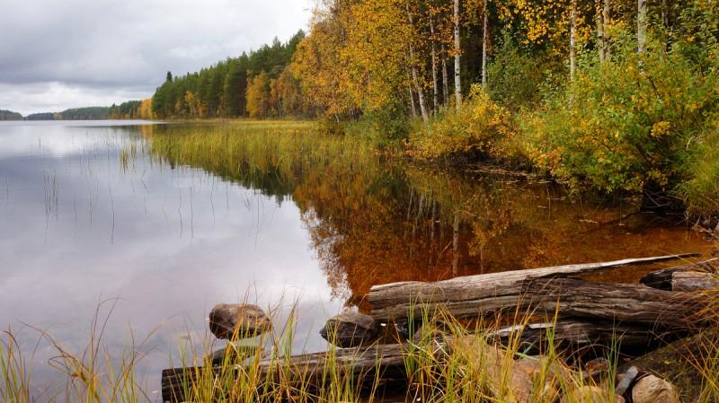 Järve vaade Soomes