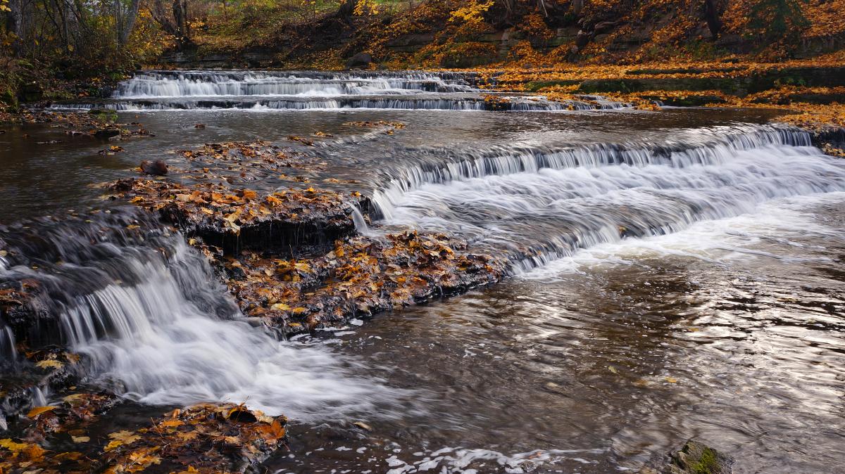Jõgi sügisvärvides