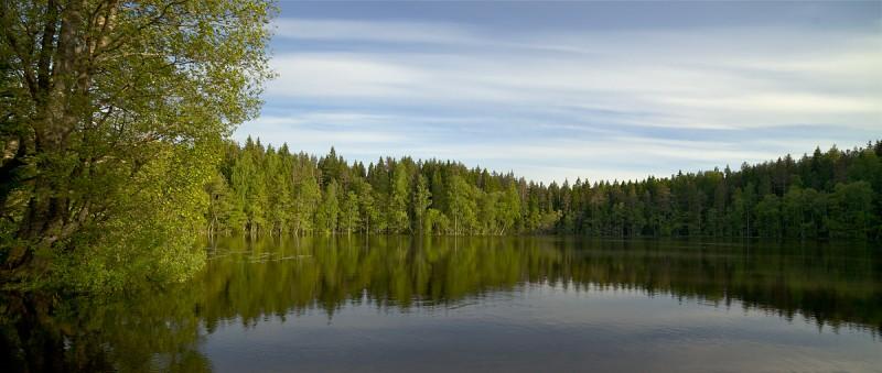 Kevadine järve vaade