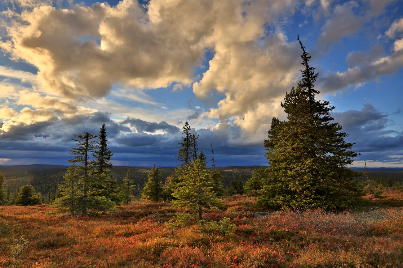 Lapland – HDR