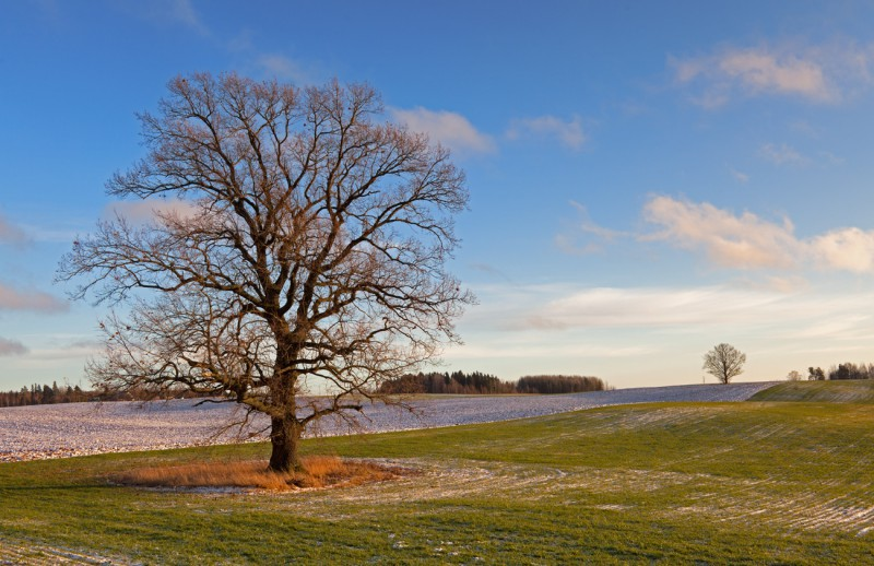 Lõuna-Eestis