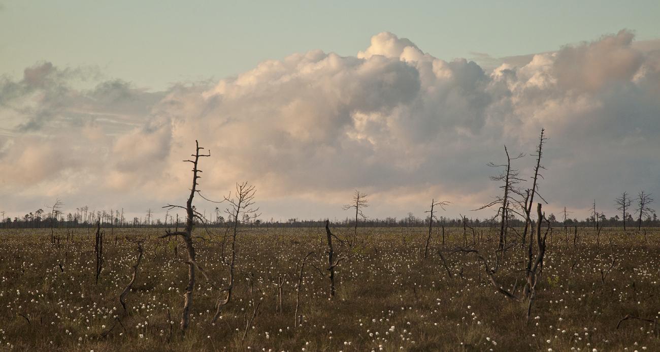 Maastik pilvega