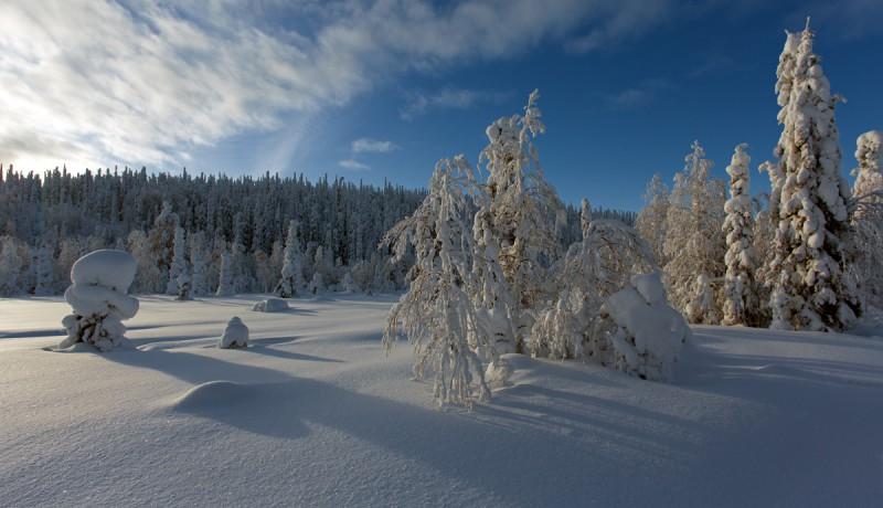 Talvemaastik Soomes