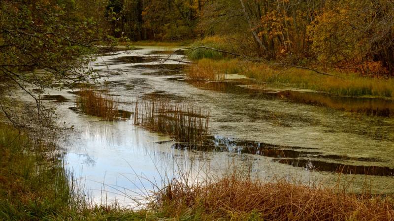 Sügiseselt laisk jõgi