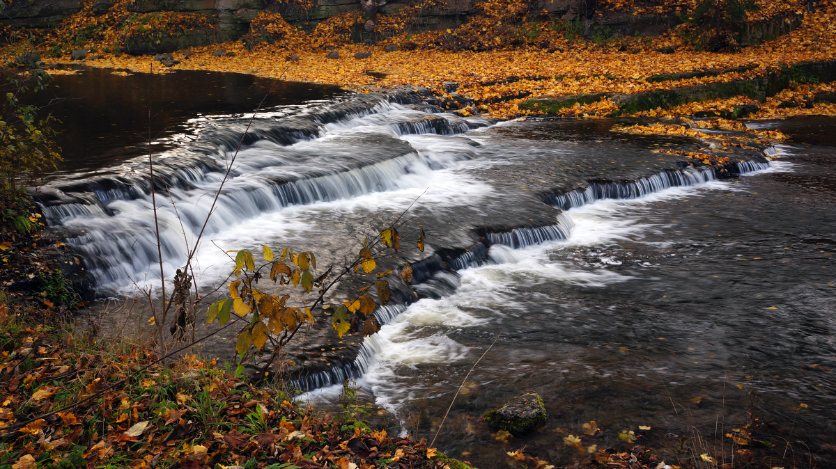 Sügisvärvides jõgi