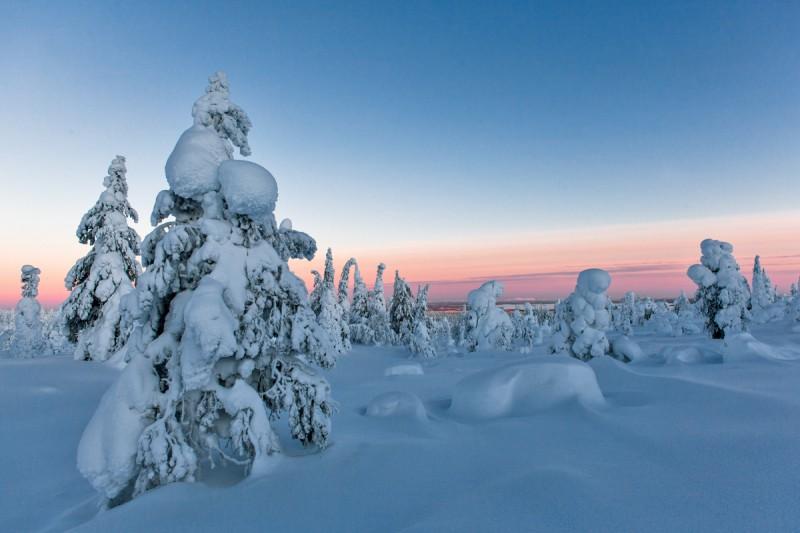 Talv tuleb