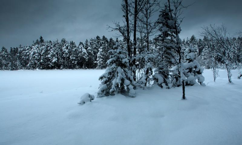 Talveõhtu järve ääres
