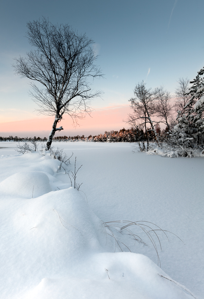 Talv rabas 2