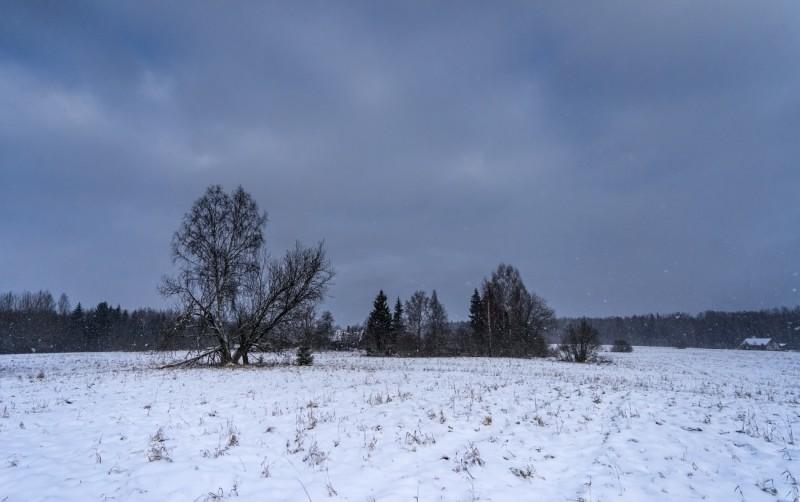 Jõululaupäeval Lõuna Eestis