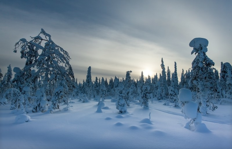 Talv Lapimaal