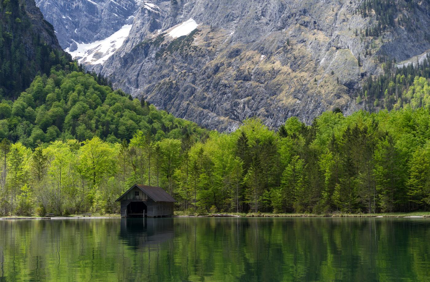 Paadikuur Alpides