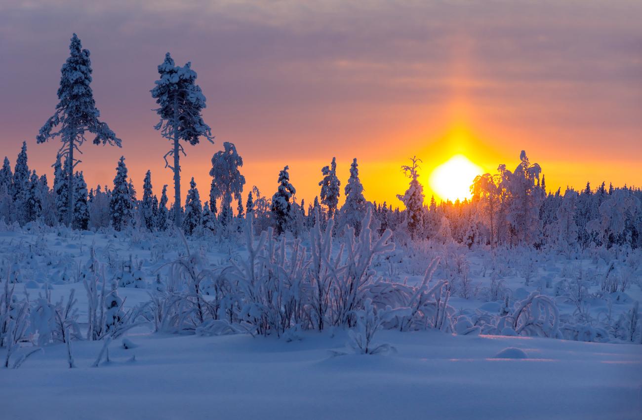 Üks talvine päikesetõus