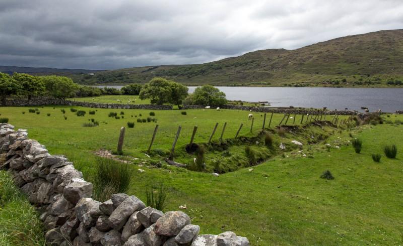 Iiri maastik
