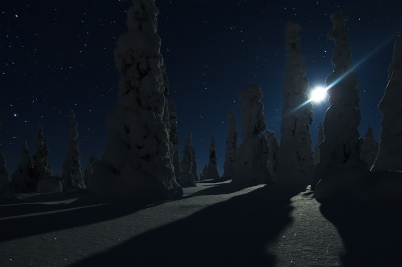 Kuuvalgel ööl