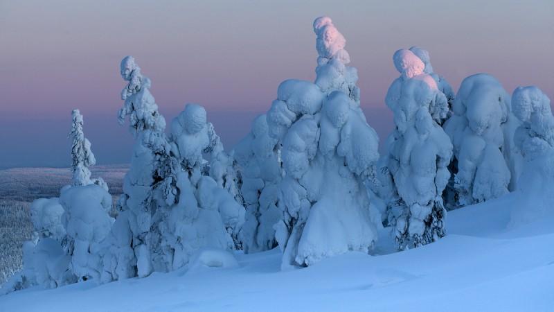 Lumeskulptuurid