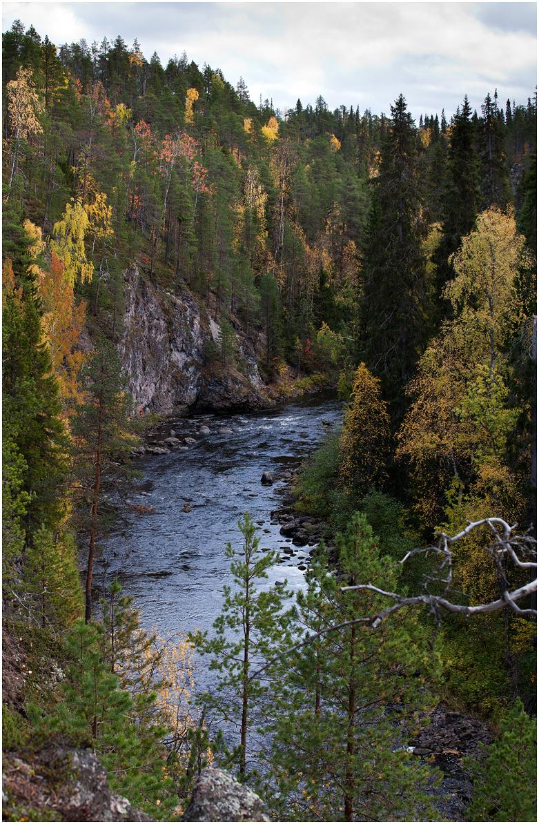 Oulanka kanjon