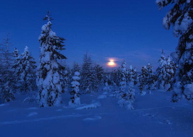 Talveõhtu Lapimaal