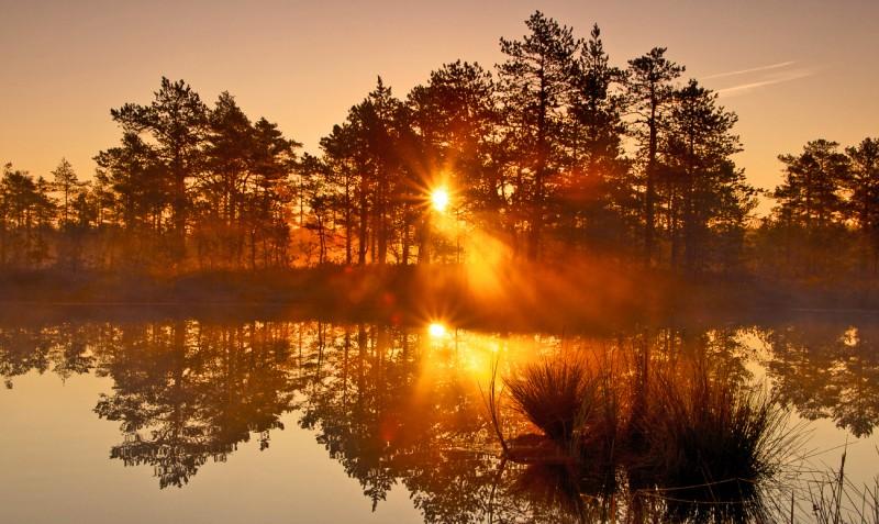 Päikesetõus Viru rabas