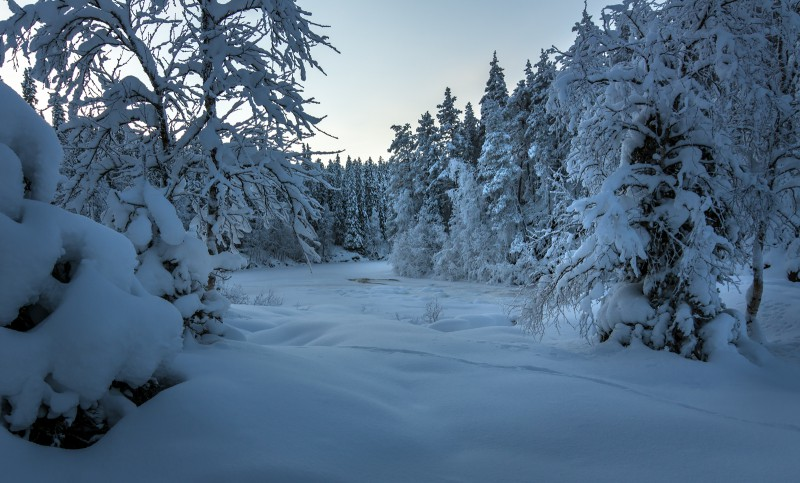 Oodates Talve